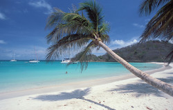 les-grenadines
